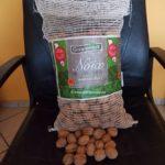 Ein Sack voller Nüsse