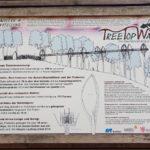 1. Tag am Edersee und der Baumkronenweg