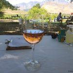 10. Tag in Kapstadt – Fahrradtour, Wein und Käseprobe